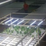 """Johnson's Family Farms - Indoor Hydroponic Systems, Growing Supplies and Kits<br /><br /><a href=""""http://www.jffalaska.com/"""" target=""""_blank"""">http://www.jffalaska.com/</a>"""