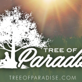 Tree Of Paradise Cannabis Wholesale