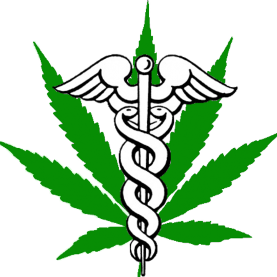 The Marijuana Doctor Hollywood